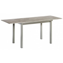 TABLE RECTANGULAIRE AVEC 2 ALLONGES