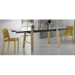 TABLE EXTENSIBLE EN VERRE HORNET
