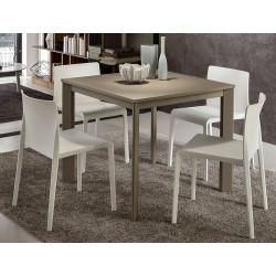TABLE EXTENSIBLE MARIO