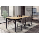 TABLE RECTANGULAIRE VICENZA HT75