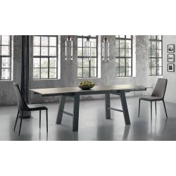 TABLE EXTENSIBLE HORNET