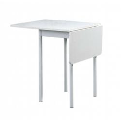 PETITE TABLE PLIANTE EN...