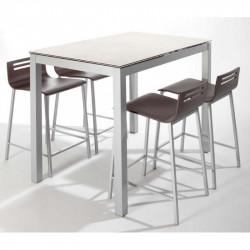 TABLE CERAMIQUE AVEC...
